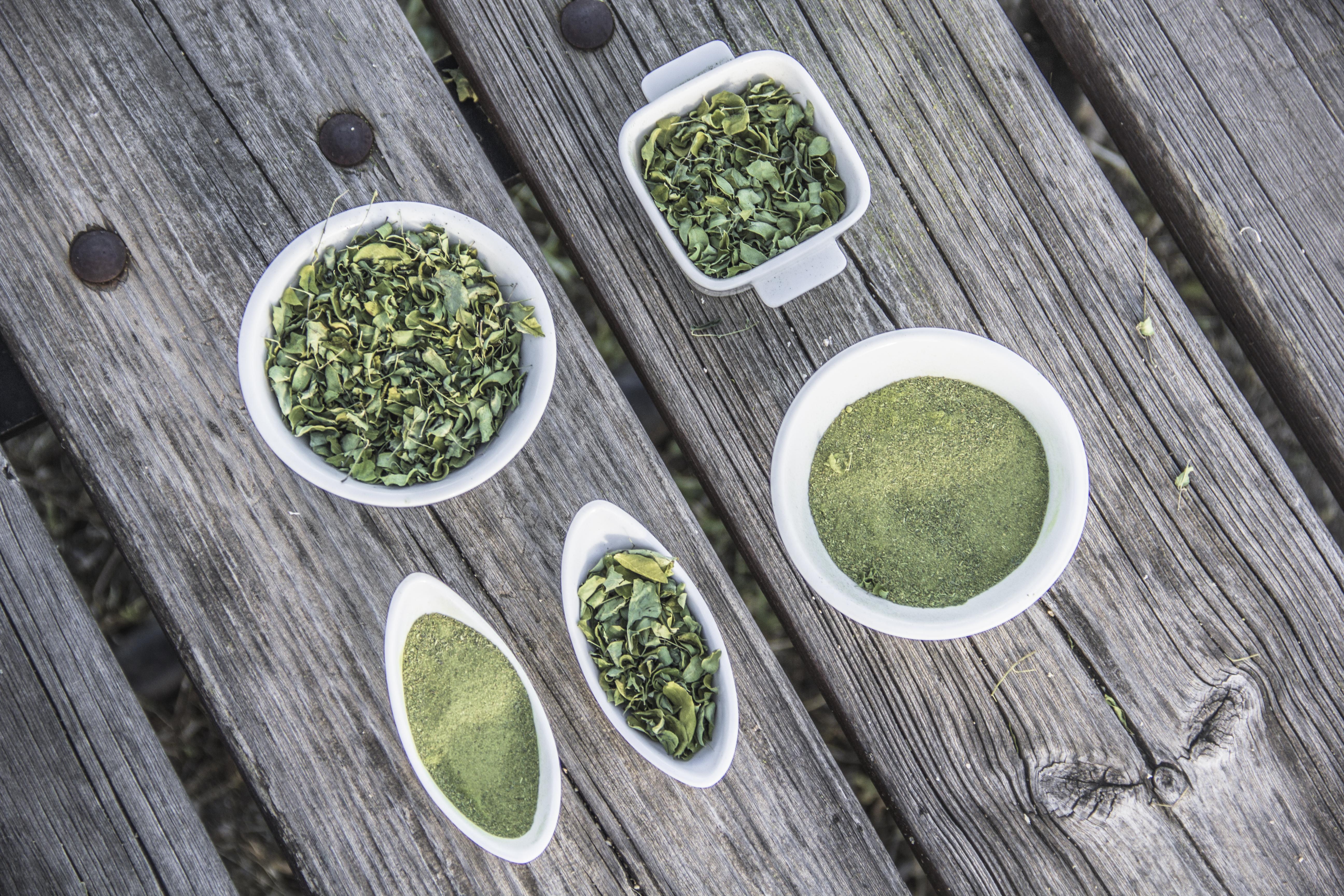 El polvo de Moringa se obtiene mediante molienda de la hoja seca.