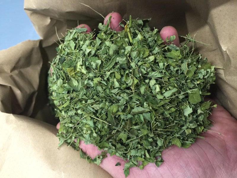 Hojas de Moringa orgánica, alimento funcional que supone un Aporte Diario Natural reequilibrante.