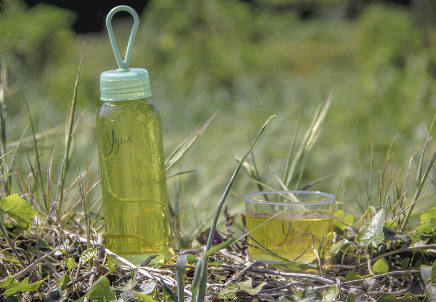En la imagen un Yguá de Moringa, bebida vegetal natural rica en proteína completa, con todos los aminoácidos esenciales, incluida la leucina.