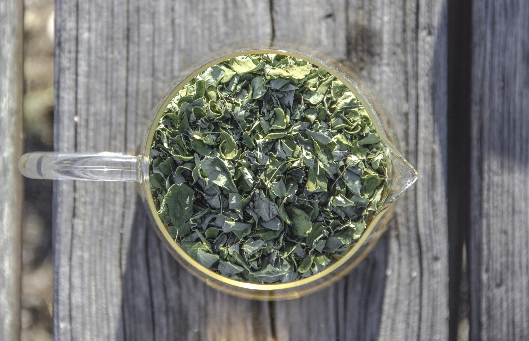 Las hojas de Moringa son una excelente fuente de proteína vegetal completa y biodisponible.