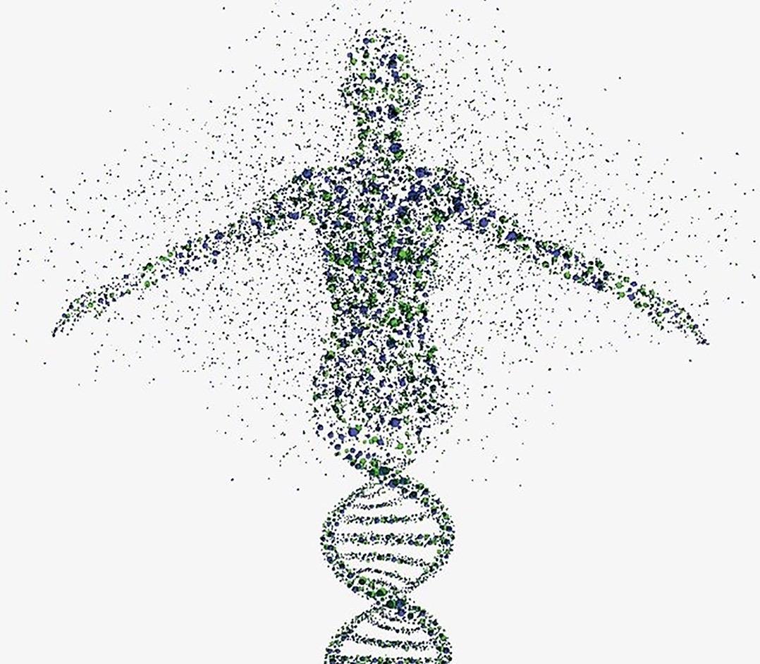 """Cuatro letras en nuestro ADN nos """"escriben"""" como humanos."""
